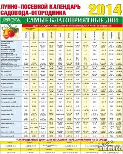 Чемпионат беларуси по футболу 2017 высшая лига календарь на